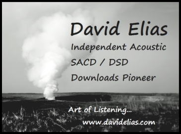 davidelias-pioneer-flyer-z